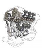 Моторное масло Motul для авто